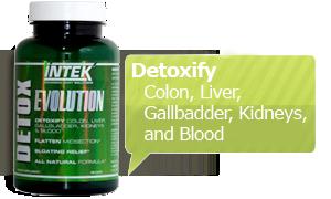 INTEK Detox Evolution